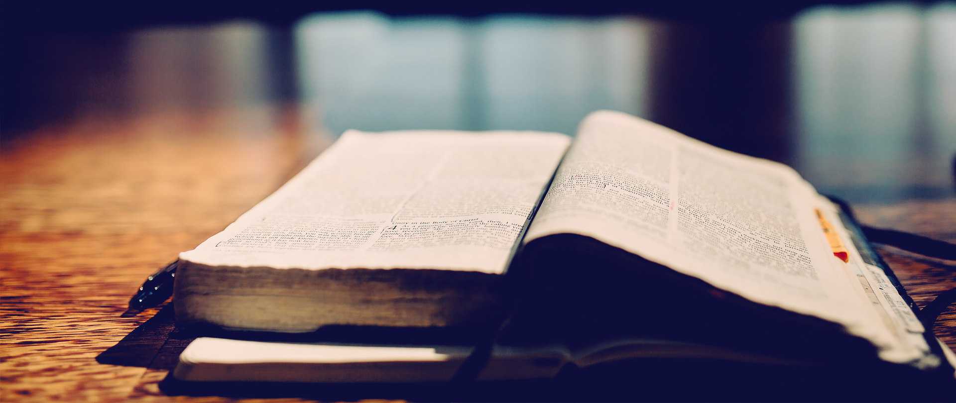 Winter Bible Study Electives