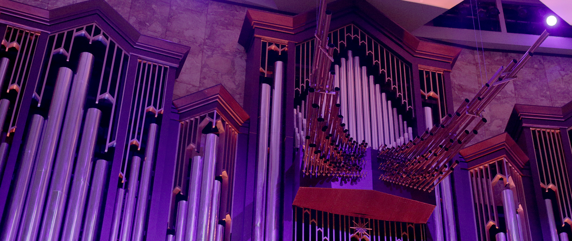 Organ Concert